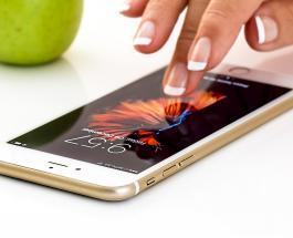 iPhone 11 пролежавший год на дне озера порадовал владельца рабочим состоянием