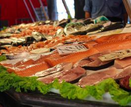 Самые полезные и самые опасные виды рыб для здоровья человека: советы диетолога
