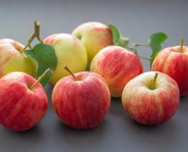 5 причин есть яблоки каждый день: польза фруктов для здоровья