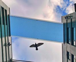 Первый в мире панорамный бассейн на высоте 35 метров откроется в Лондоне