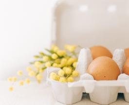 5 причин не выбрасывать яичную скорлупу: как можно использовать ее в быту