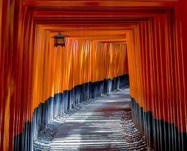 Капсульные отели и арбузы в форме куба: интересные вещи которые можно встретить в Японии