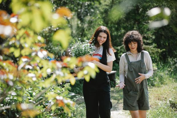 две девушки идут по парку и разговаривают