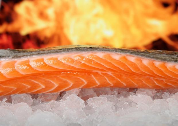 стейк красной рыбы на кусочках льда