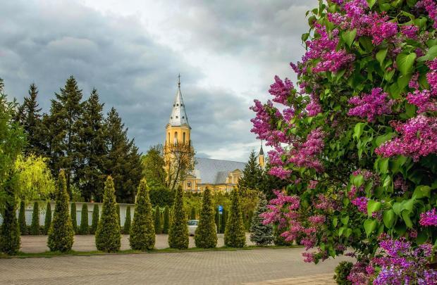 церковь весной и куст сирени