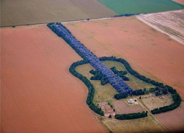 лес-гитара