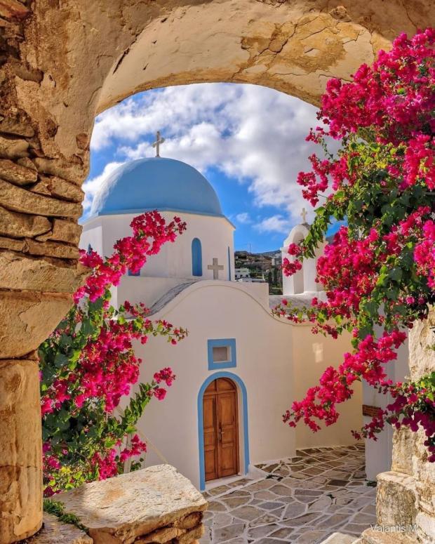 цветут деревья около белой каменной церкви с голубым куполом