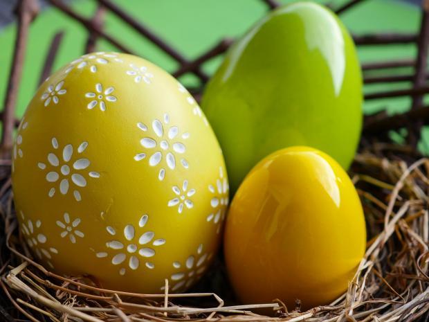 в гнезде лежат желтые и зеленые пасхальные яйца