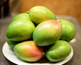 Новый рекорд Гиннеса: самое тяжелое манго в мире вырастили фермеры из Колумбии