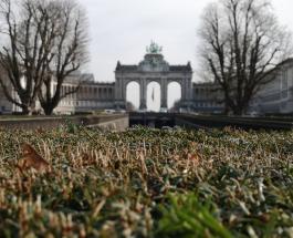 Фермер случайно переместил границу между Бельгией и Францией на 2 метра