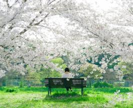 Гороскоп на сегодня 8 мая 2021: возможно обострение хронических заболеваний