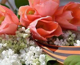 День Победы 9 мая: открытки и традиции празднования важной даты