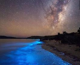 Светящиеся волны смог запечатлеть фотограф на одном из пляжей Новой Зеландии