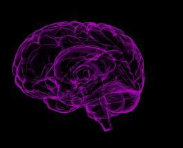 Ученые тестируют нейронный имплант, позволяющий человеку печать текст силой мысли: видео