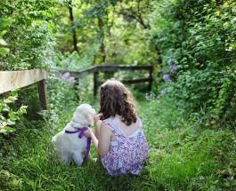 5 пород собак которые прекрасно подходят для семей с маленькими детьми