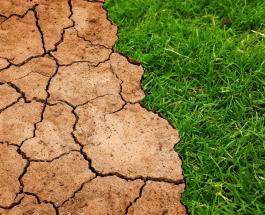 К 2025 году мир достигнет первого критического температурного порога - новый отчет ВМО