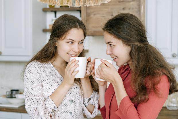 близнецы молодые девушки пьют чай на красивой кухне