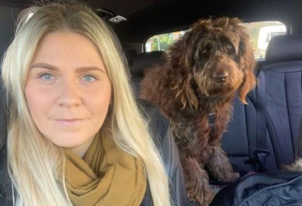 Женщина с псом-чубакой