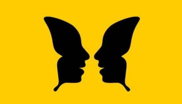 визуальный тест бабочка и два лица в профиль