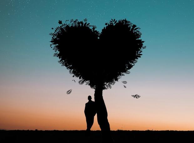 силуэт мужчины и дерева в форме сердца на фоне яркого неба