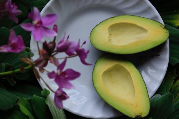 половинки авокадо на тарелке