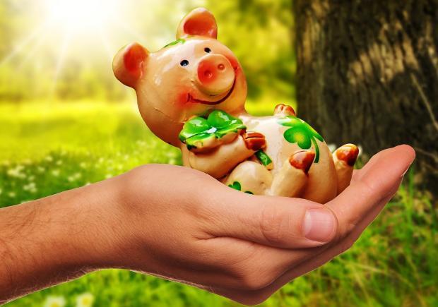 копилка-свинка сидит в раскрытой ладони