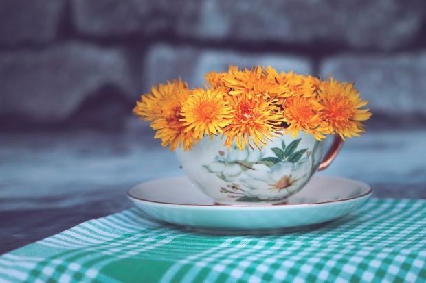 в чайной чашке на клетчатой зеленой скатерти стоят цветы
