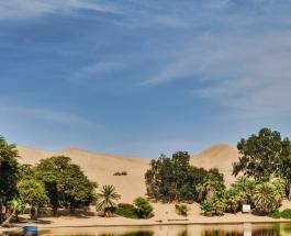 Мужчина потратил более 20 лет на создание зеленого оазиса в пустыне на севере Индии