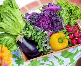 4 причины добавить в ежедневный рацион как можно больше овощей