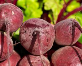Чем полезна свекла: 5 причин добавить овощ в ежедневный рацион