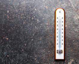 Рекордная температура воздуха пятый день подряд фиксируется в Санкт-Петербурге