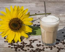 9 рецептов холодного кофе - вкусного напитка для утоления жажды летом