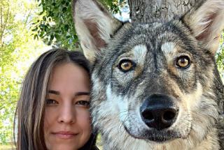 Россиянка вырастила спасенного волчонка как домашнего питомца: фото Киры и ее хозяйки