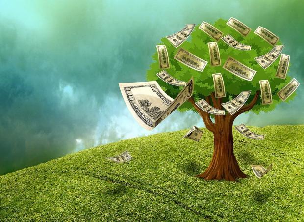на зеленой поляне растет дерево с денежными купюрами