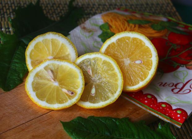лимон, порезанный кружочками