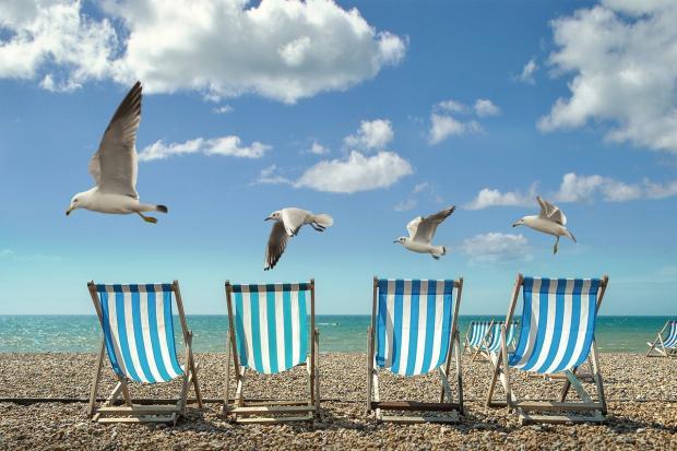 чайки летят над пляжными стульями у моря