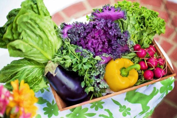 в зеленой корзинке лежат красивые свежие овощи