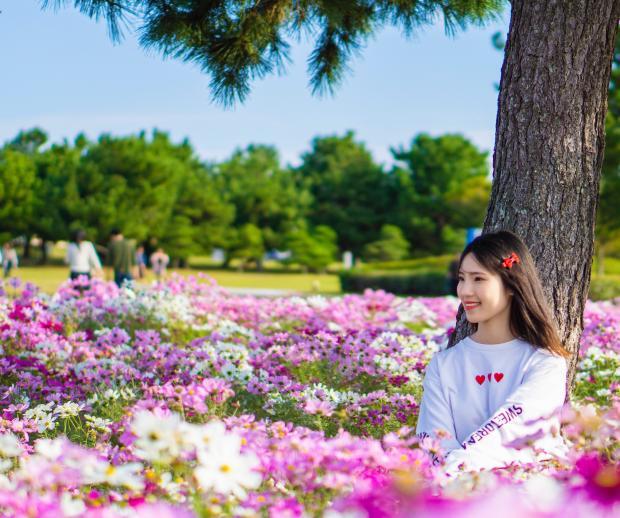 девушка в белом худи посреди поля ярких цветов