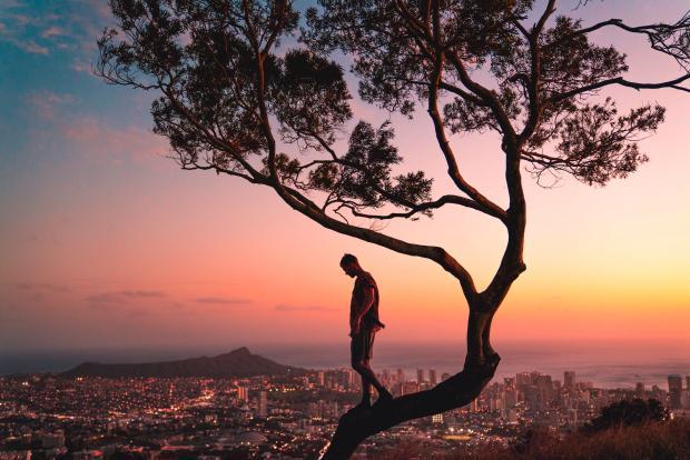 мужчина идет по стволу дерева а фоне вечернего города