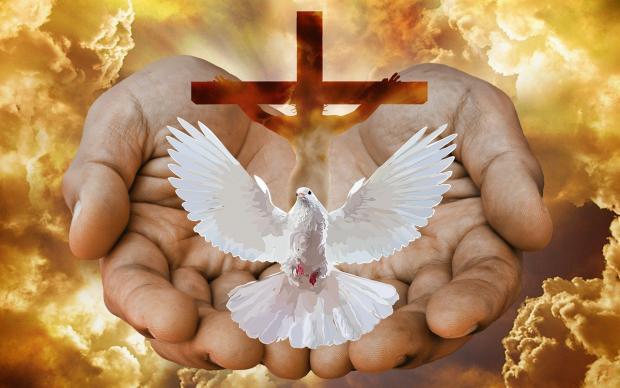 белый голубь и крест в сложенных ладонях