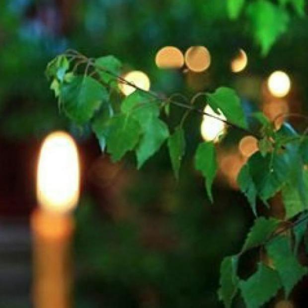 свеча горит рядом с березовыми ветвями