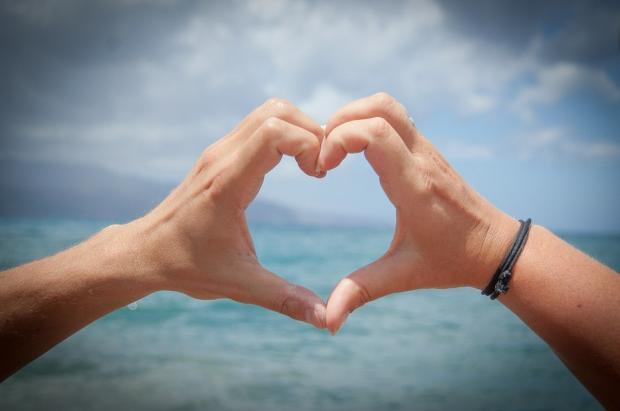 из человеческих ладоней сложено сердце