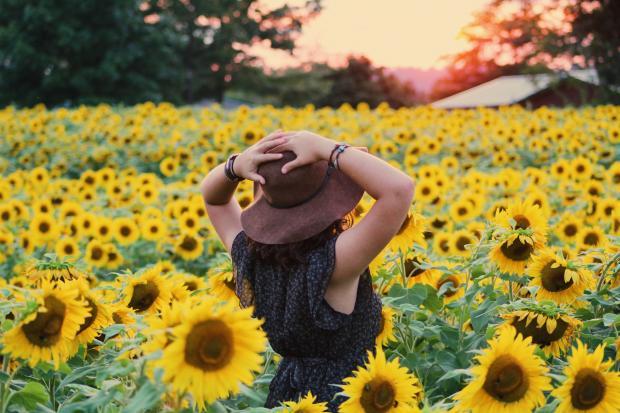 девушка в черном платье и соломенной шляпе на поле с подсолнухами