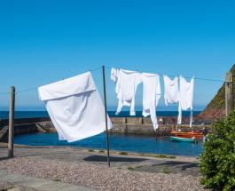 5 эффективных средств для отбеливания одежды без специальной химии