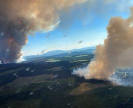 Многочисленные молнии в Канаде стали причиной более 130 лесных пожаров