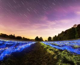 Июльские Пегасиды 2021: как правильно загадывать желание в звездопад с 7 по 13 июля