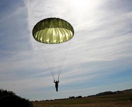 Российская армия обучает собак прыжкам с парашютом: необычные кадры