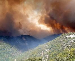 Лесные пожары в Турции угрожают жителям города Манавгат