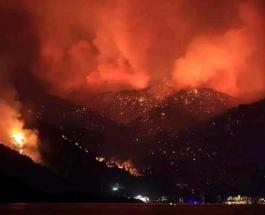 Масштабные пожары в Турции досрочно прервали отпуск для тысяч туристов