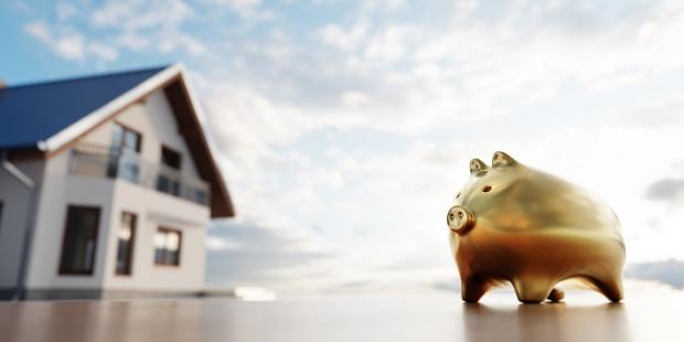 свинья-копилка и дом